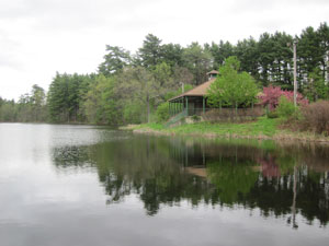 Dorrs Pond / Livingston Park